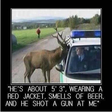 Deer complaint.jpg