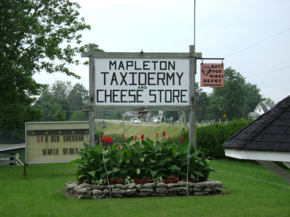 Mapleton Cheese.jpg