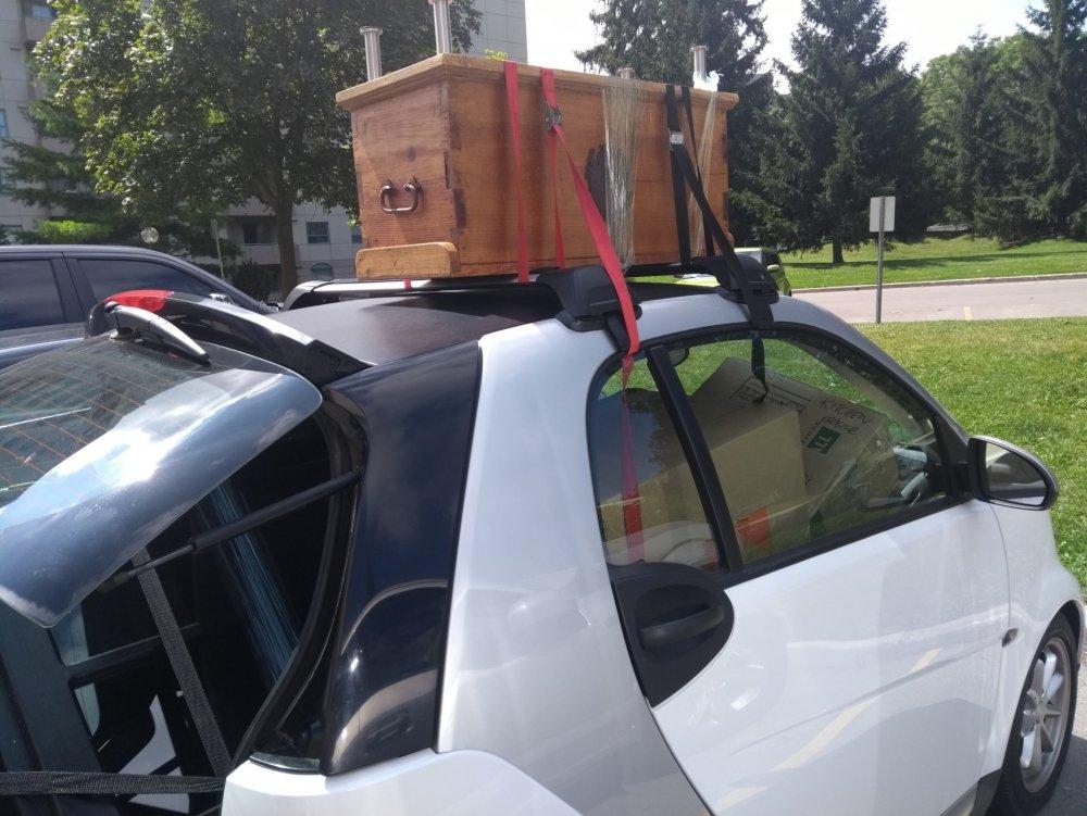 Moving Van 3  .jpg