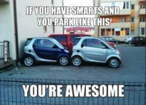 Smart awesome parking.jpg