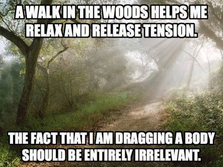 A walk in the woods.jpg